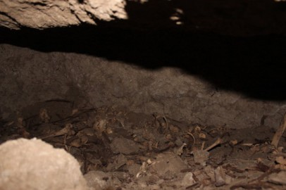First impressions of the eastern chamber's content: human bones and wooden remains in near darkness
