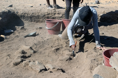 Tomomi excavates through the fill at 2-R-65. Note the stone walls in the right of the trench