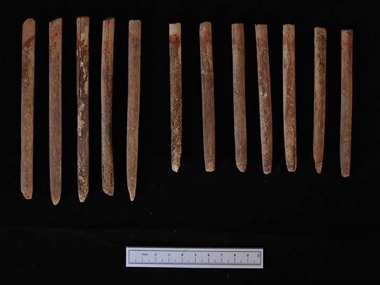 Decorated ivory sticks from Grave 244 at Amara West (F9835)