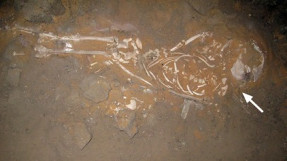 Child burial Sk244-19 with copper alloy needle underneath the head (arrow).