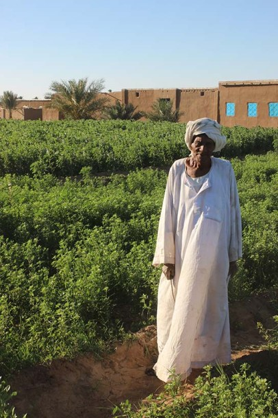 Mohamed in his fields, with house in the background