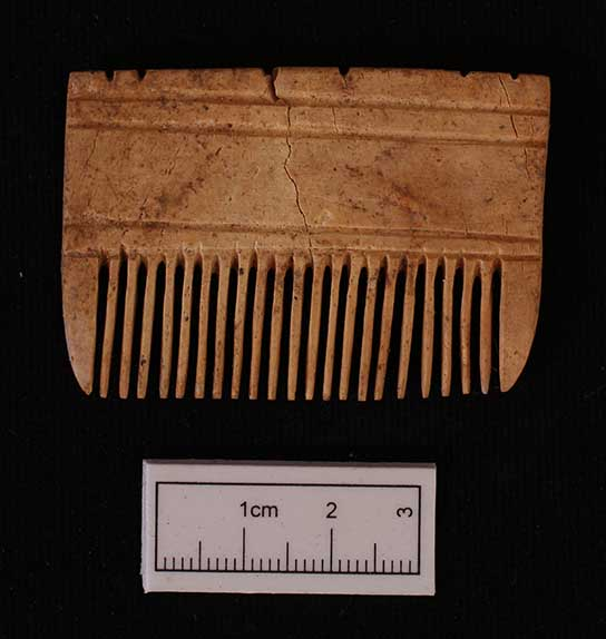 Ivory comb (F9839) buried with skeleton 244-19.