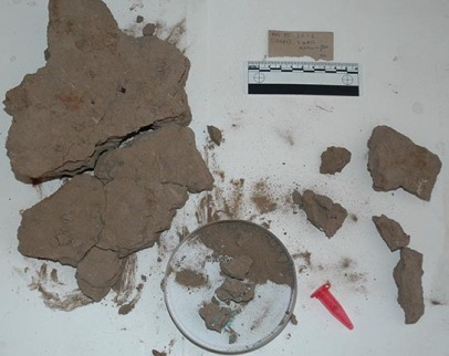 The block of mud floor as lifted during excavation of the central room of house D11.1