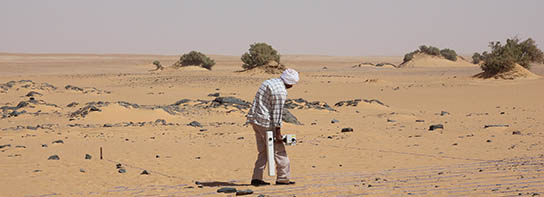 Mohamed Abdelwahab walking grids of geophysical survey (fluxgate magnetometry) at site 2-R-65, in the desert north of Amara West