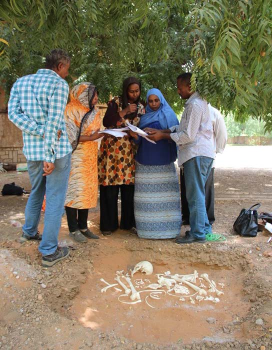 Mohamed Saad explaining field recording of commingled human remains to workshop participants.