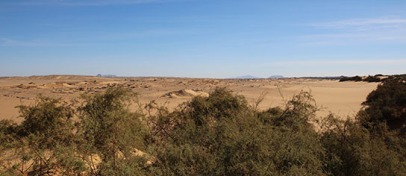 A silent, deserted, Amara West seen from the river-side dunes
